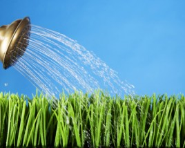 Effective Tips For Watering Your Lawn