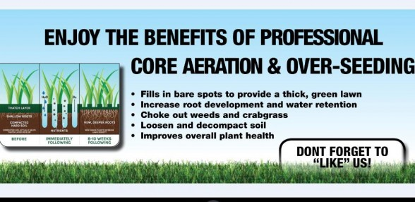 Professional Core Aeration and Seeding