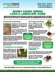 Spring Lawn and Landscaping Guide
