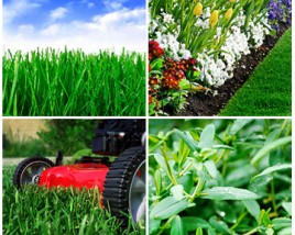 2013 Top Five Mid-Atlantic Lawn Care Resolutions