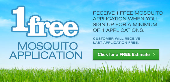 1 Free Mosquito Application