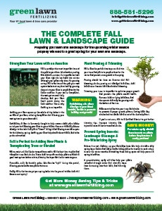 Fall Lawn and Landscaping Guide