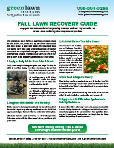 Fall Lawn Recovery Guide