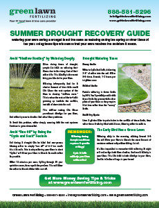 Summer Drought Recovery Guide