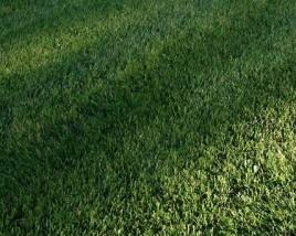 GLF-lawn-Copy-268x214