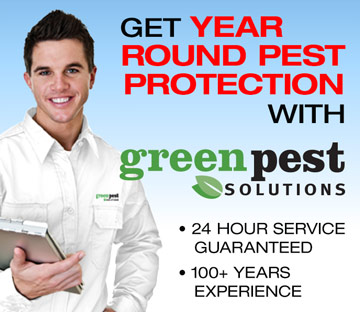 Visit Green Pest Solutions