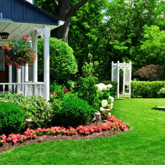 Does Lawn Care Add Value to Your Home?