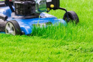 Mow in the Fall to keep your lawn healthy