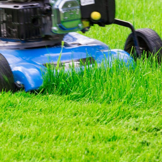 Blue Lawnmover Cutting Grass
