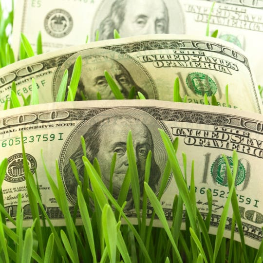 How Much Does Lawn Care Service Cost?