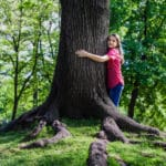 Top 5 Tips for Arbor Day Tree Care