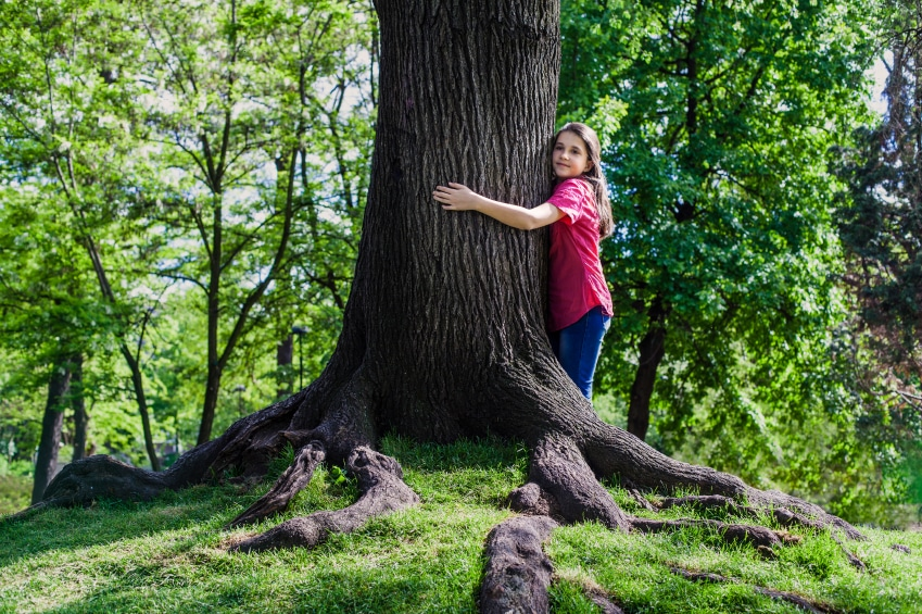 Arbor Day Tips for Tree Care