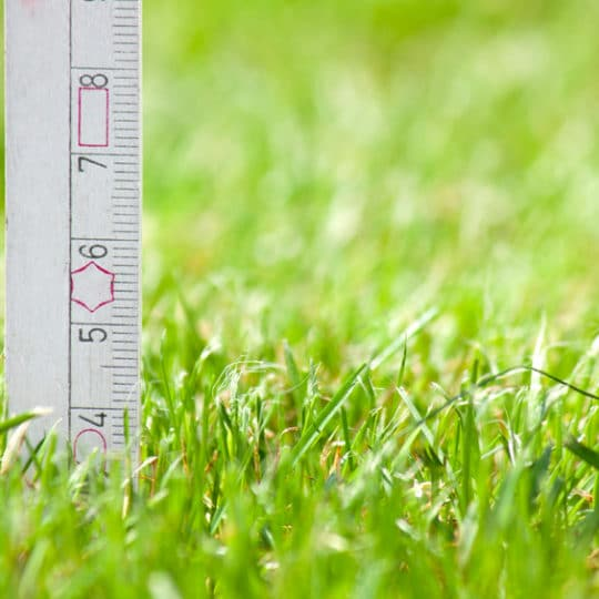 What is the Proper Mowing Height for My Lawn?