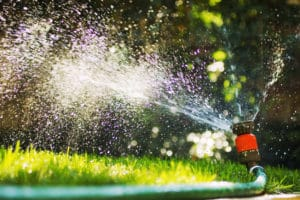 proper watering of lawn