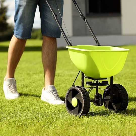Why Should You Fertilize Your Lawn?