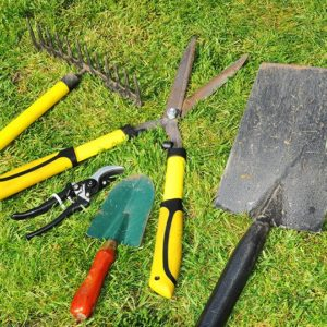 Essential lawn care tools