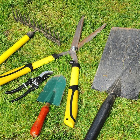 Five Essential Lawn Care Tools for Homeowners
