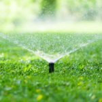 Ways to Water Your Lawn