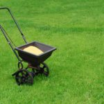 Top Five DIY Lawn Care Mistakes