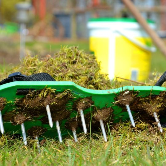 What Are the Benefits of Aeration and Seeding?