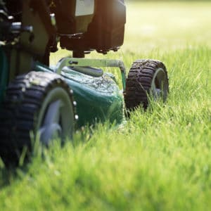 To Taking Care Of Your Lawn You Have Options Help Make Decision Here Are The Benefits And Concerns Should Know About Trugreen Vs Diy