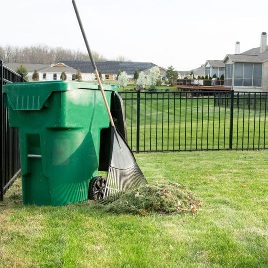 Are Grass Clippings Good for Your Lawn?