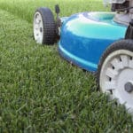 How to Cut Grass for Winter