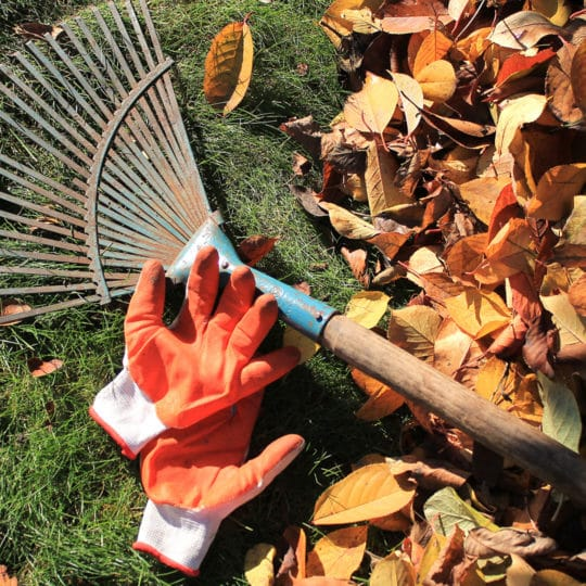 How Long Does Fall DIY Lawn Care Take?
