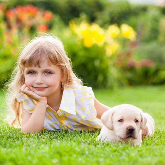 Girl and puppy on lawn