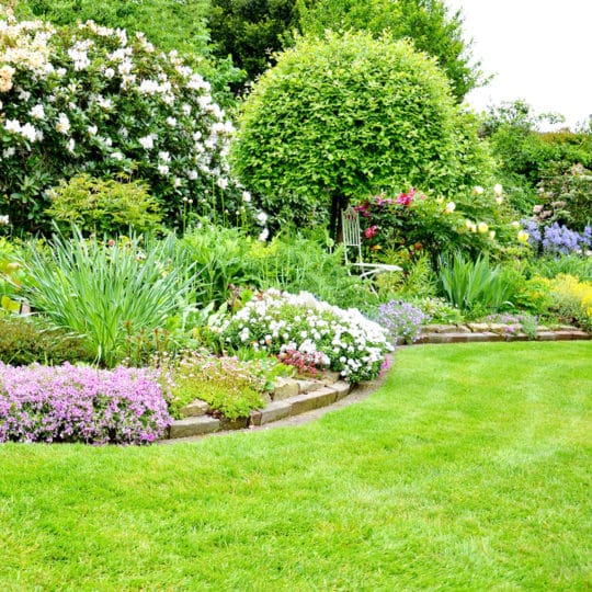 Landscape vs. Lawn Care Services: What's the Difference?