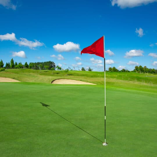 How to Mow Grass Like a Putting Green